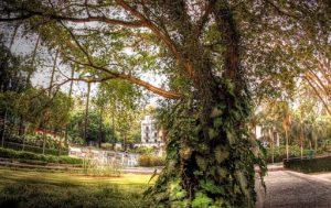 Parque Burble Marx