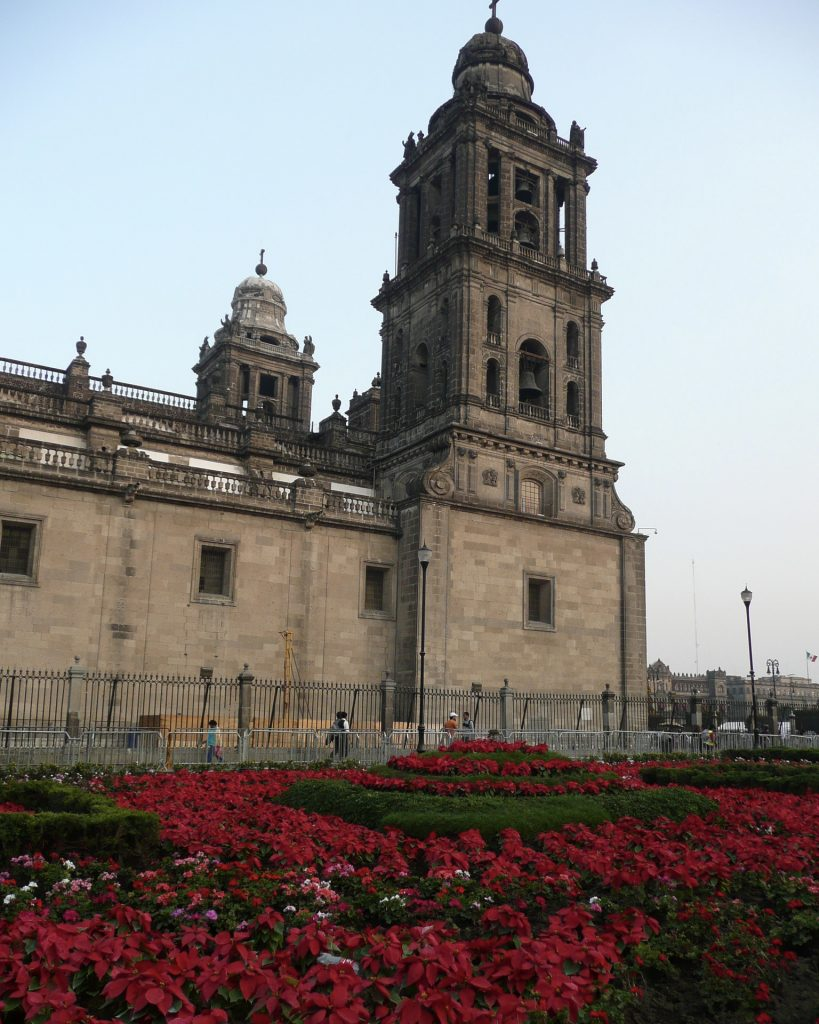 Christmas at the cathedral in Mexico City
